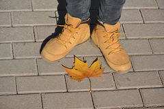 Autumn shoes and leaf Royalty Free Stock Images