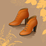 Autumn shoes. Stock Images