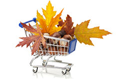 Autumn Shopping Royalty Free Stock Photography