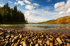 Autumn shore Stock Image