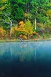 Autumn Shoreline Reflections Fotografering för Bildbyråer