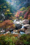 Autumn in Shosenkyo Gorge. Autumn scene of waterfall in Arakawa river at Shosenkyo Gorge, Kofu, Japan Royalty Free Stock Photos