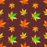 autumn się liście Obrazy Royalty Free