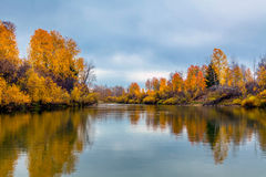 Autumn in Siberia Royalty Free Stock Image