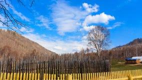 Autumn Siberia Royaltyfri Bild