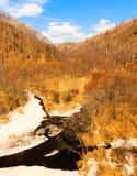 Autumn Siberia Royaltyfria Foton
