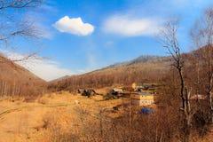 Autumn Siberia Arkivfoto