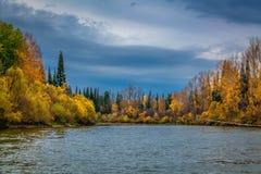 Autumn in Siberia Stock Images