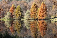 Autumn Sibiu. This is an autumn view from Dumbrava Sibiului lake and zoo garden Stock Images