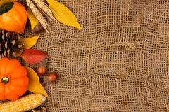 Autumn side border against a burlap background Royalty Free Stock Images