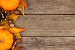 Autumn side border against rustic wood Royalty Free Stock Photos