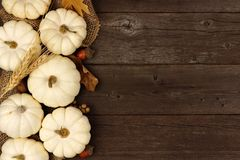 White pumpkin and brown leaves side border over rustic wood. Autumn side border of white pumpkins and brown leaves over a rustic wood background Royalty Free Stock Photography