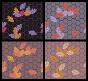 Autumn sidewalk Royalty Free Stock Images