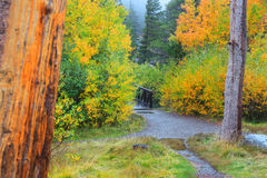 Autumn in Sierra Nevada mountains Royalty Free Stock Photos