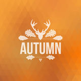 Autumn sign Stock Images