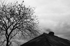 Autumn silhouette. Roof with chimney and smoke with naked tree near Royalty Free Stock Image