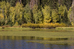 Autumn on Silver Lake Stock Photography