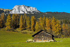 Autumn in the Simmental valley Stock Photo