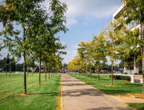 Autumn in the Sittard city Royalty Free Stock Images