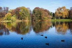 Autumn at Skaryszewski Park in Warsaw Stock Images
