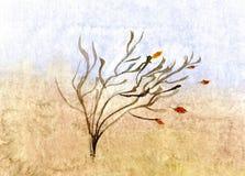 Autumn sketch - hand drawn illustration. Autumn sketch - hand drawn water-color illustration, for your design, postcard, album, cover, scrapbook etc Stock Images