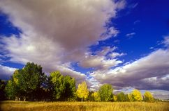 Autumn sky. Beautiful landscape in autumn with cloudy sky Royalty Free Stock Image