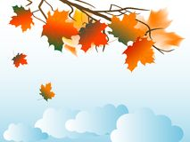 Autumn sky. With clouds and leaves royalty free illustration