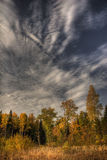 Autumn sky. Autumn landscape with cloudy sky royalty free stock photography