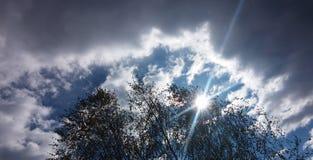 Autumn Sky Royaltyfria Bilder