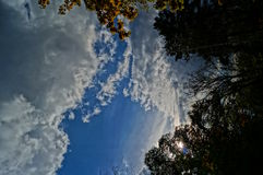 Autumn Sky Royaltyfri Foto