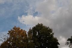 Autumn sky. Autumn sky is a beautiful screensaver for your gadget Stock Image