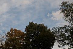 Autumn sky. Autumn sky is a beautiful screensaver for your gadget Stock Photo