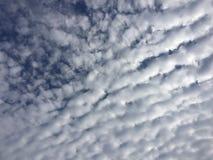 Autumn Sky Clouds Blue White sorl royaltyfri foto