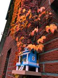 Autumn, sky, leaves, late autumn, house. Birdhouse, leaves wall of the house stock photo