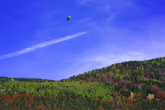 Autumn skydiving. Beautiful blue sky with skydivers above autumn forest Stock Image