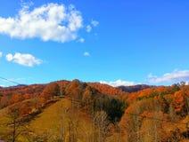 Autumn Skyline Royaltyfri Fotografi