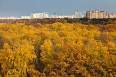 Autumn skyline Stock Photography
