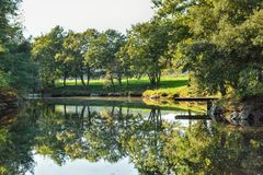 Autumn small lake in countryside. At sunset Royalty Free Stock Photo
