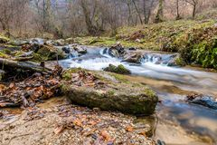 Autumn Mountain stream landscape Stock Image