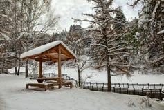 Autumn snow. stock image