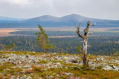 Autumn snowfall. Over distant peaks in the Tankavaara area of the Finnish Lapland Royalty Free Stock Photos
