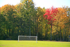 Autumn on a soccer field. With many Royalty Free Stock Images