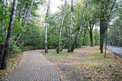 Autumn in Sokolniki. Sokolniki Park alley in autumn royalty free stock photo