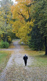 Autumn solitude. Loneliness of the person against a mellow autumn cloudy day Stock Photography