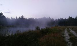 Autumn soon. Summer, dawn, fog, steam above the lake, road, forest, birch, oak royalty free stock photos