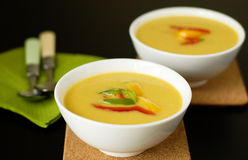 Autumn soup Stock Photography
