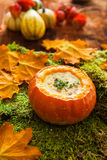 Autumn soup with pumpkin royalty free stock photography