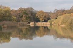 Autumn on Southampton Common Ornamental Lake royalty free stock image