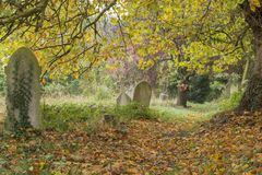 Autumn in the Old Cemetery on Southampton Common stock photography