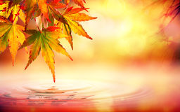Autumn spa background with red leaves